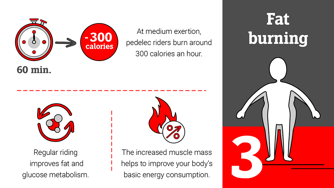 E-biking and fat burning: Around 300 calories per hour.
